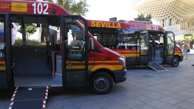 Los dos vehículos tienen capacidad para 27 pasajeros además del conductor
