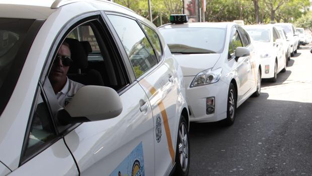 Los taxis afrontan importantes retos en los próximos meses de cara a su supervivencia