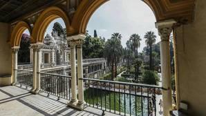 El Ayuntamiento reconoce la falta personal en el Real Alcázar de Sevilla