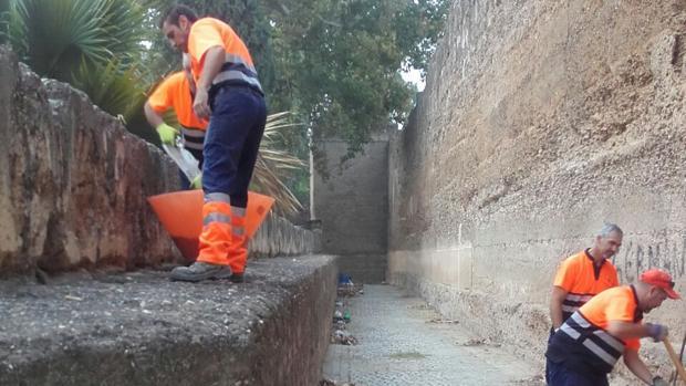 Trabajadores de Lipasam realizando labores de limpieza en la muralla