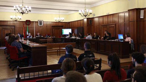 Una de las sesiones del juicio al acusado por acuchillar al vicario de San Isidoro