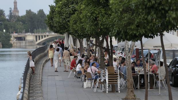 El Ayuntamiento de Sevilla está estudiando una propuesta para reducir los veladores de la calle Betis
