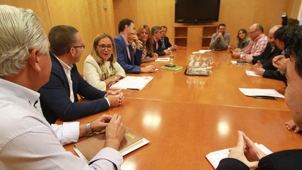 Reunión esta mañana en la Diputación Provincial de Sevilla