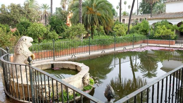 El Jardín del León, con su histórico aljibe