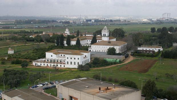 Terrenos del Cortijo de Cuarto, propiedad de la Diputación de Sevilla
