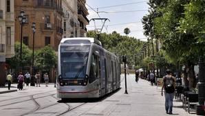 El tranvía, en su trayecto por la Avenida