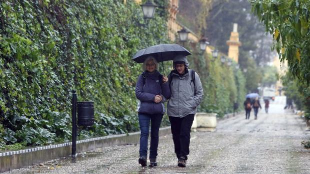 Paraguas en los jardines de Murillo