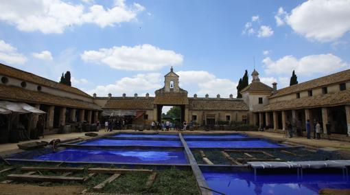 Las ocho piscinas de añil