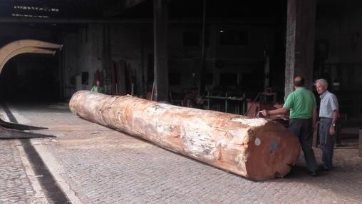 Para construir la réplica de la nao se emplean troncos de gran porte