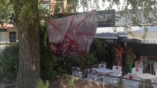 Daños provocados por la caída de una rama en una terraza en Bellavista