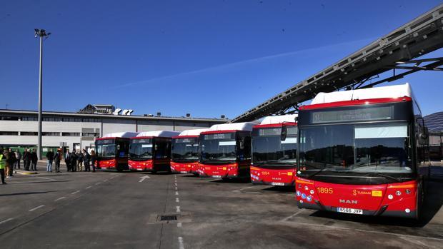 Flota de autobuses de Tussam.
