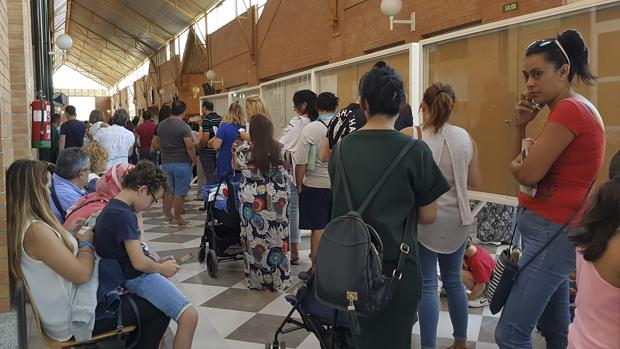 El PP pide a la Junta que resuelva los casos de los cientos de niños sin colegio asignado en Sevilla