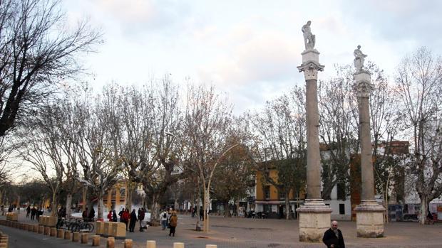 La Alameda de Hércules es una de las zonas con más proliferación de pisos turísticos