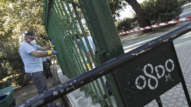 Trabajadores del plan de empleo en el Parque de María Luisa