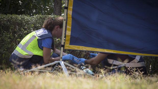 La Policía Científica recogió en el crimen de María del Pilar un indicio fundamental