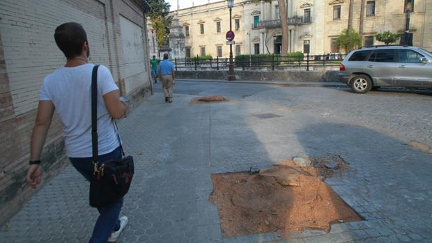 Tala de árboles el pasado mes de septiembre en Sevilla