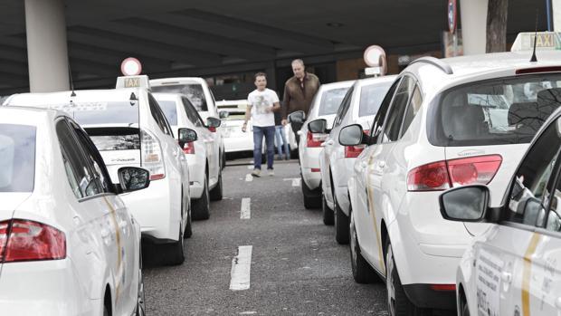 Los taxistas sevillanos se quejan de «intrusismo»
