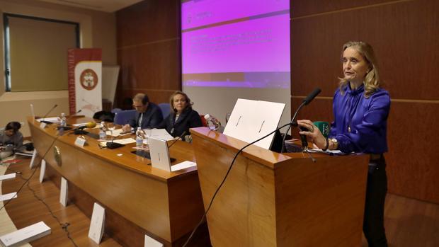 Carmen Barroso, vicerrectora de Planificación Estratégica, durante la presentación del proyect o