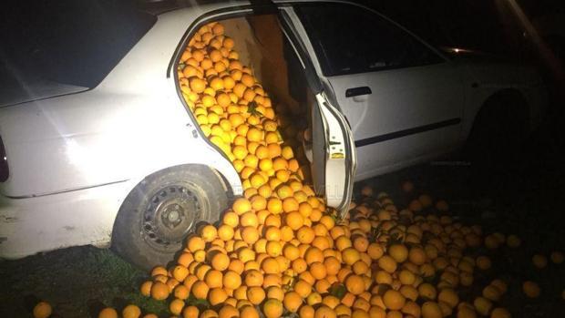 Vehículo interceptado a rebosar de naranjas