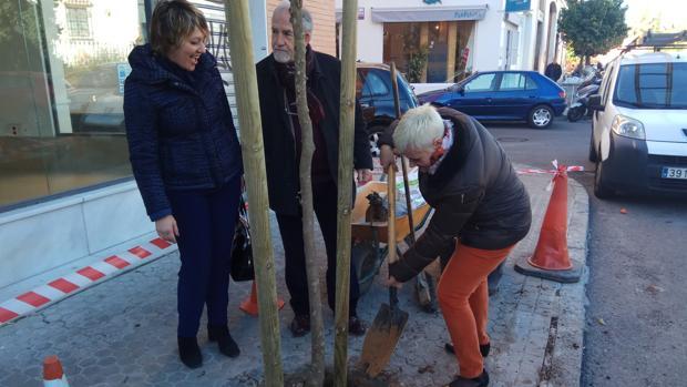 El Ayuntamiento ha plantado nuevos árboles en Nervión