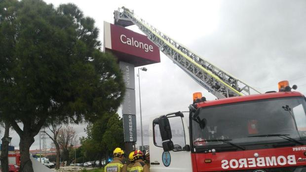 Efectivos de los bomberos actuando en la zona
