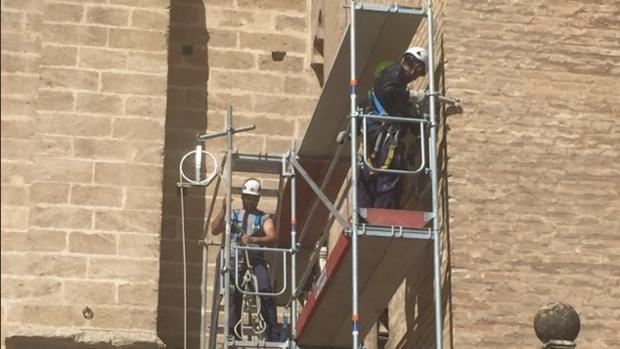 Operarios trabajando este lunes en el montaje del andamio de la Giralda