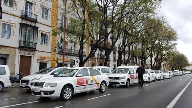 Taxis en el Paseo de Colón