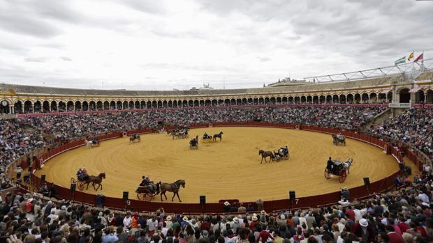 Exhibición de Enganches en la plaza de toros de la Maestranza el año pasado