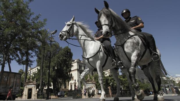Policías a caballo por la céntrica calle San Fernando