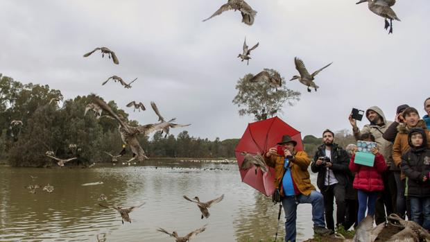 Un avistamiento en la Cañada de los Pájaros