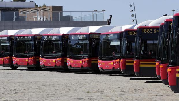 Imagen de los autobuses públicos de Sevilla capital