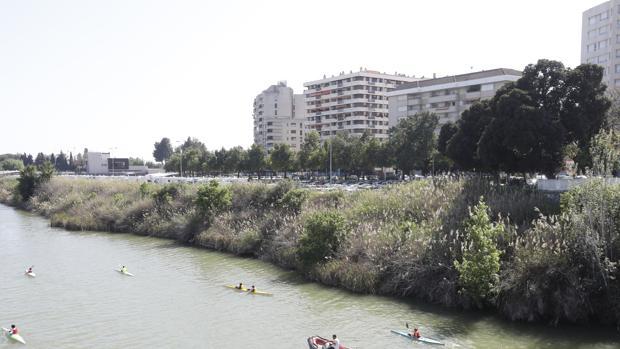 El espacio en el que se creará la nueva zona ajardinada y el paseo fluvial
