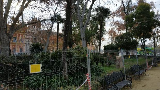 Control de roedores en los jardines del Cristina