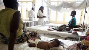 La mortalidad por malaria se reduce a la mitad