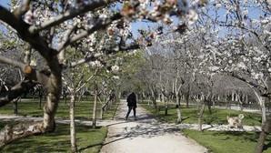 7 curiosidades ocurridas el primer día del Equinoccio primaveral que no conocías