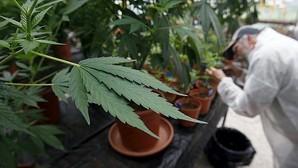¿Cuánto se gastan los europeos en bloque en drogas ilegales al año?