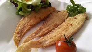 Las acedías son, como el lenguado, un pez de la familia de los soleidos cuyo nombre científico es Dicologlossa cuneata. El portavoz de Facua denuncia que sirven este tipo de pescado por lenguado
