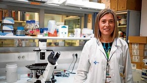 «En los próximos años es probable que se puedan curar algunos pacientes con cáncer de la sangre»