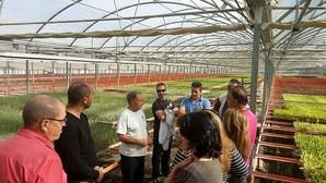 Guía práctica para convertirse en un agricultor «urbanita»