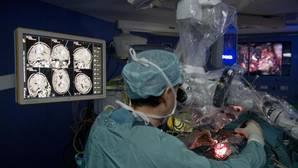 En el interior del cerebro, el órgano más complejo del ser humano