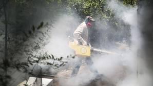 Comienzan las primeras pruebas de una vacuna contra el zika en Estados Unidos