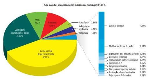 % de incendios intencionados según sus motivaciones