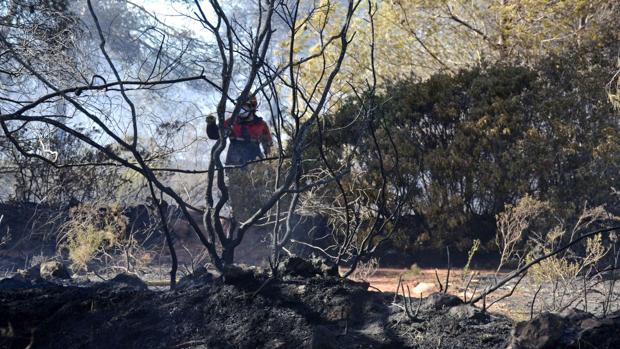 El incendio de Jávea ya ha calcinado 320 hectáreas de monte