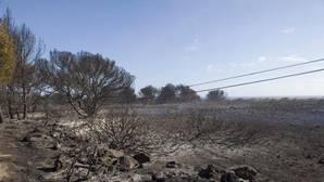 Controlado el incendio de Menorca aunque continúan los trabajos de extinción