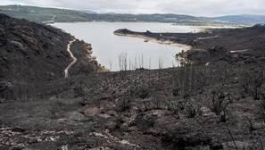 Ha llegado un nuevo tipo de incendio a España