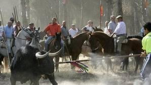 Tordesillas se prepara para un encierro sin muerte «caliente»