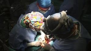 Holanda quiere que por ley todos sus ciudadanos sean donantes de órganos