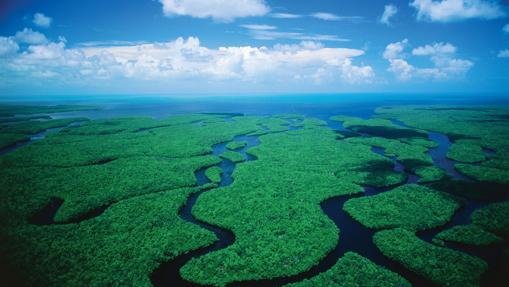Los otros «puntos negros» del Patrimonio Mundial natural