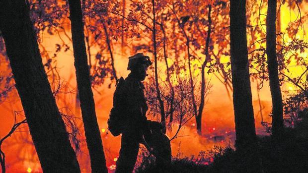 La UME ayudó a extinguir en septiembre el incendio en Entrimo (Orense)