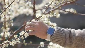 Un reloj para localizar a las personas con alzhéimer